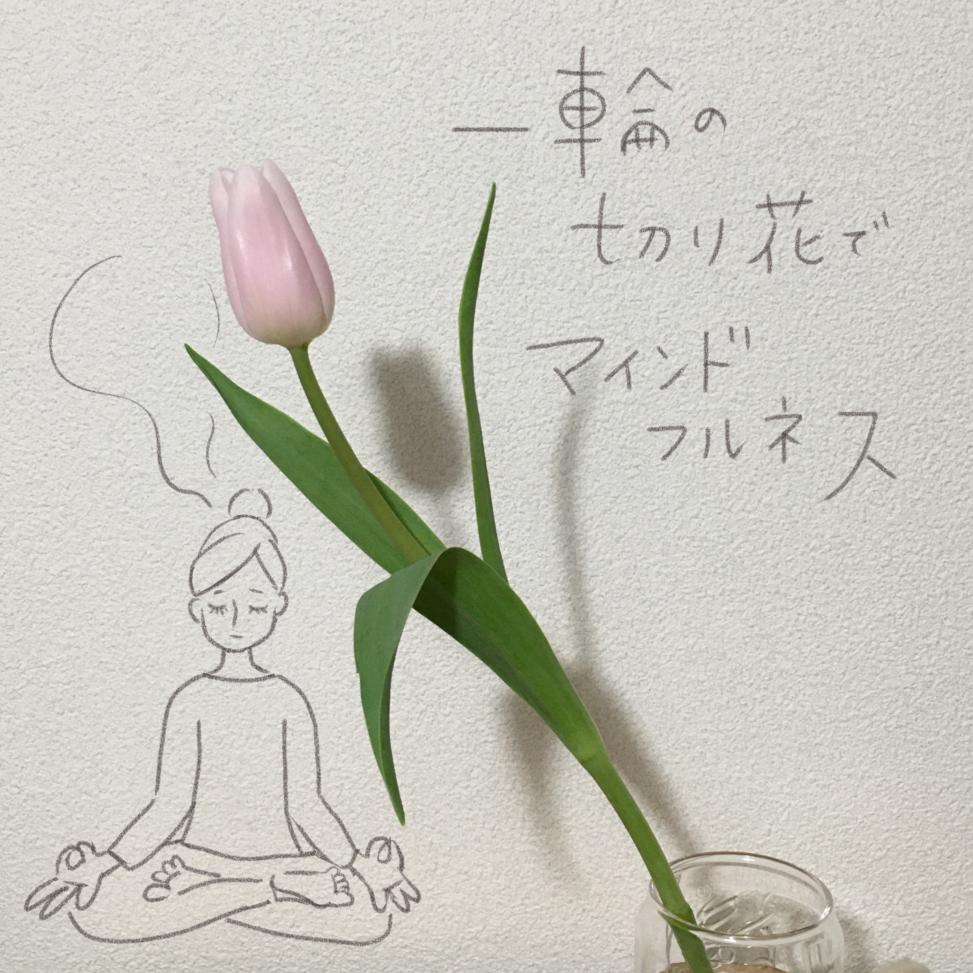 チューリップ,瞑想